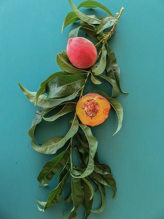 2019 Peaches