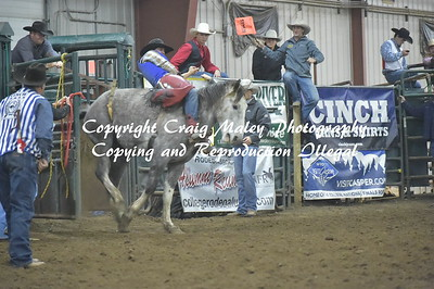 PERF 1 SADDLE BRONC 10-21-2016