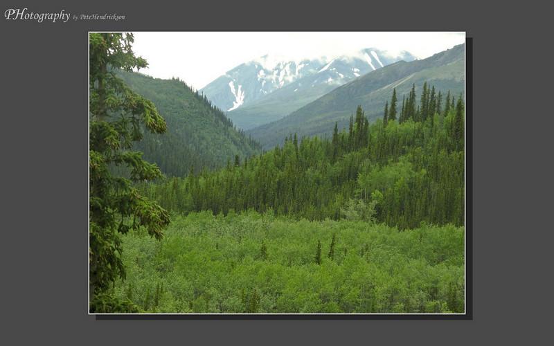 My Alaska 12-08-083.jpg