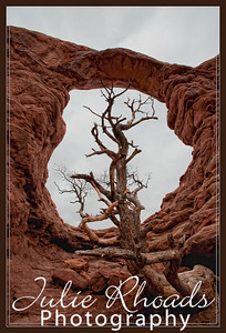 Brice Canyon National Park