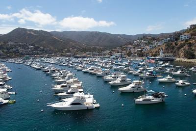 Catalina 2016
