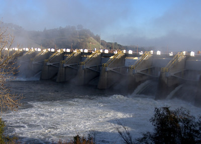 Nimbus and Folsom Dam Releases
