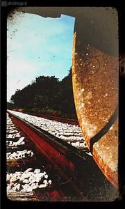iPhone Camera (4 of 44)