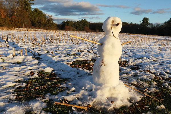 Winter features at Great Brook Farm State Park