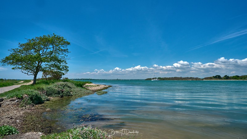 Chichester Harbour-8345 - 1-12 pm 1.jpg