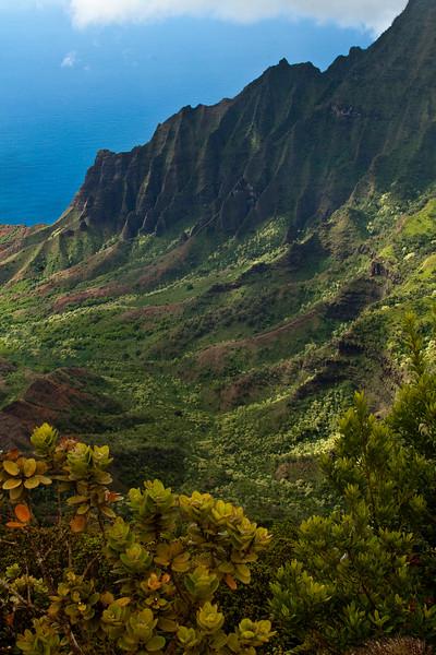 Kalalau Valley Overlook, Kauai