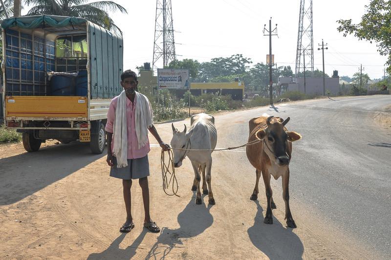 2014-03 On Road to Mysore 011.jpg
