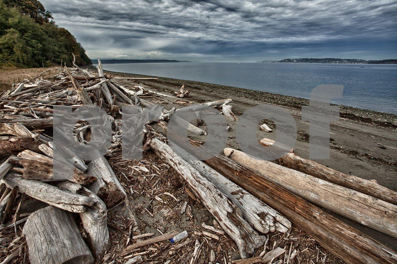 Drift wood (and plastic bottles) accumulates on the beaches of Point Robinson on Vashon Island, WA.2204