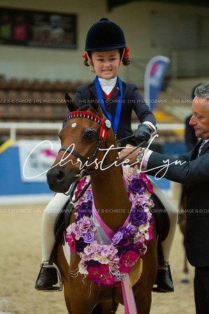 Class 11: First Ridden Show Pony 12.2 hh & under (Rider under 12 years)