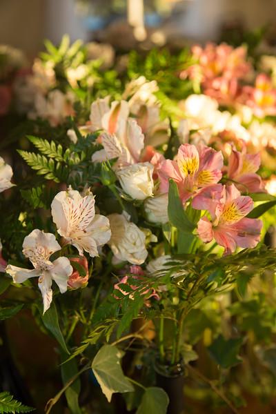 www.bellavitafotos.com-0026.jpg