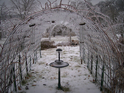2008 February Ice Storm