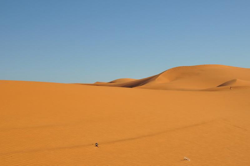Day4-Sahara-12.jpg