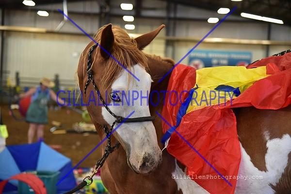 Horse Clinics