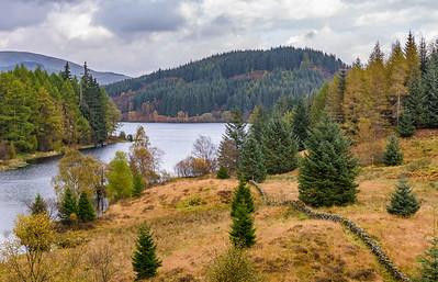 Three Lochs Forest Drive
