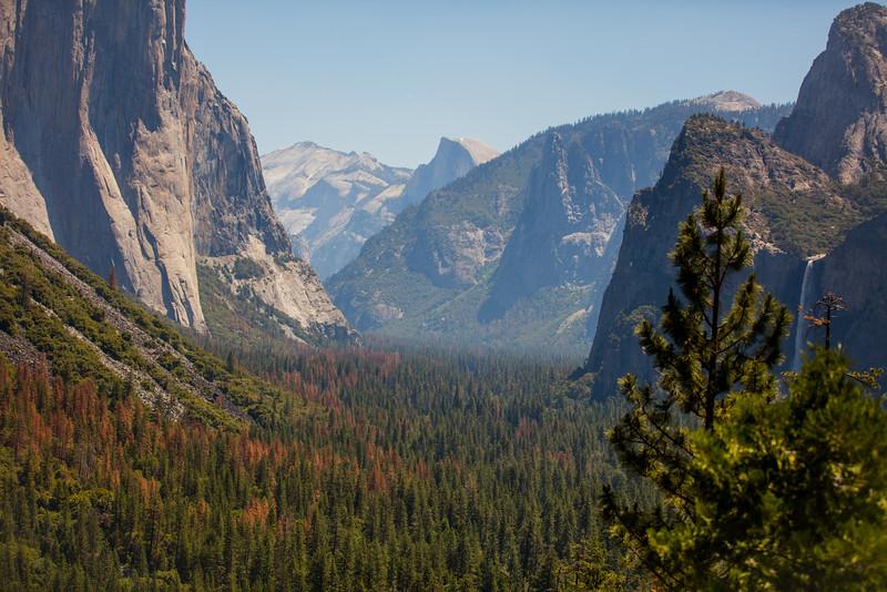 Yosemite_2016_Park-20.jpg