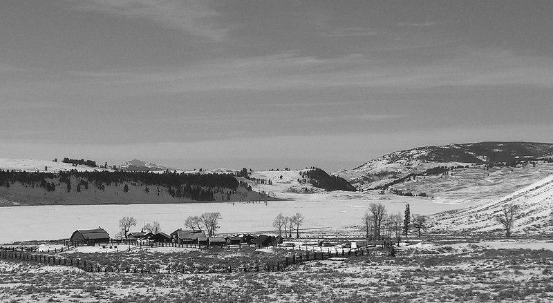 Buffalo Ranch and Lamar Valley