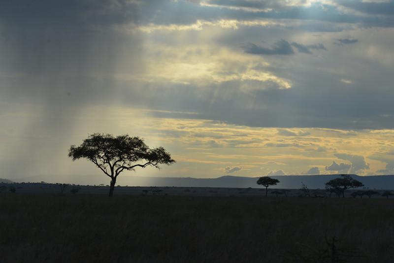 East Africa Safari 354.jpg