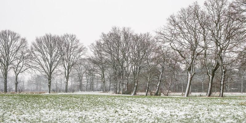 20190122_sneeuw_002.jpg