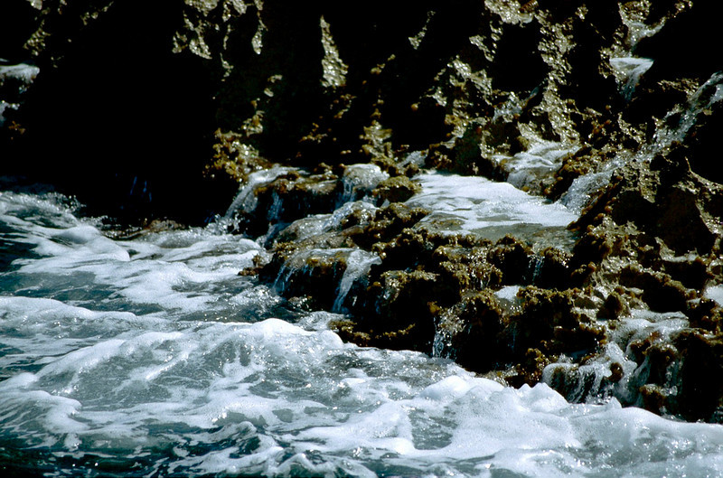 Anguilla_033.jpg