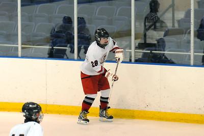 2010-11 McDowell Hockey