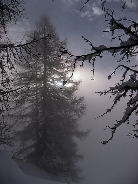 Misty morning in the mountains near Val d'Isere, French Alps