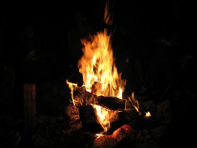 Cohort bonfire June 2008