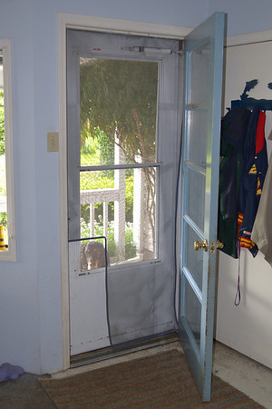Screen Door Photos
