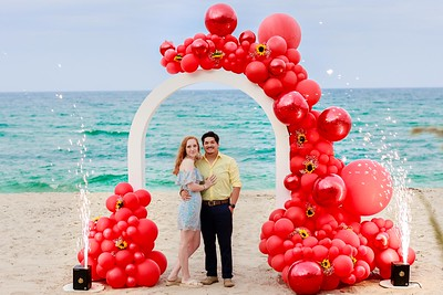 Damir and Alexis Surprised Engagement