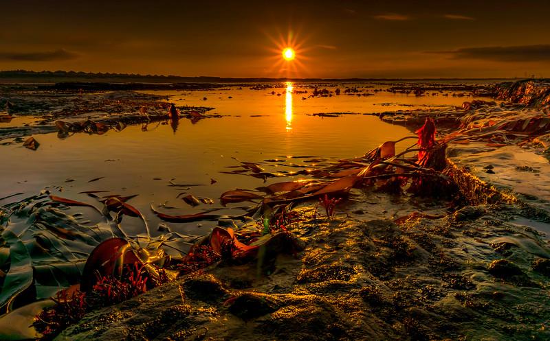 Sunrise and Sunset (137).jpg