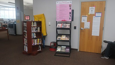 2020: Women's History Month Book Display