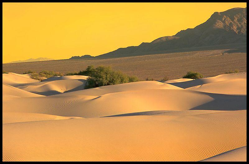 Desertscape_v2.jpg