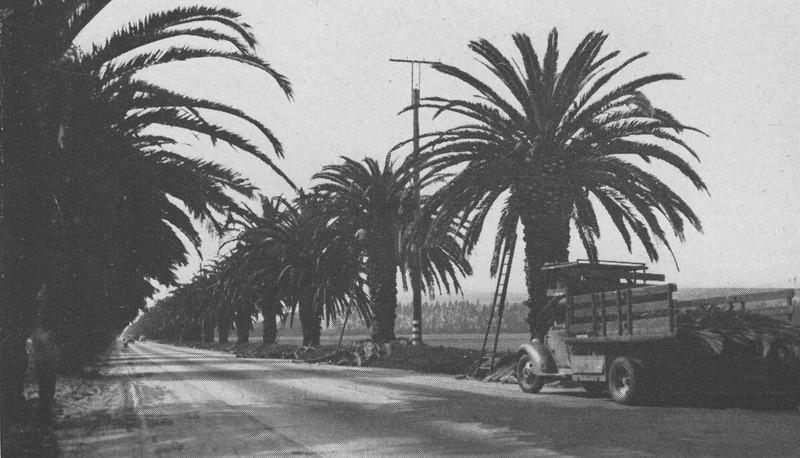 1946-05-06-CAHiPub-12a.jpg