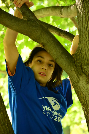 Climbing Trees in Tower Grove Park