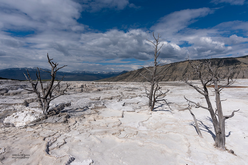 Mammoth Hot Springs, Yellowstone NP, WY, USA May 2018-1.jpg