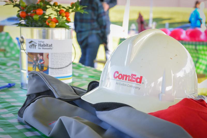 ComEd-1011.jpg