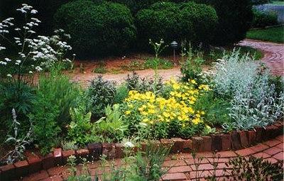 6 flowers-along-a-path-Highland.jpg