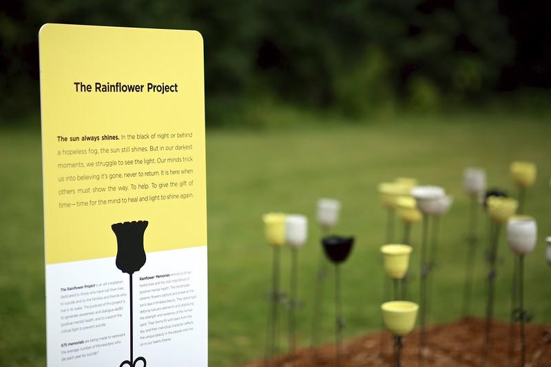 Rainflower Project 4P7A5116.jpg