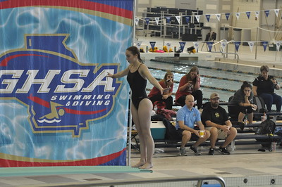 State Dive Girls