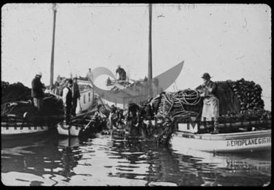 Boats-Fishing-Slides