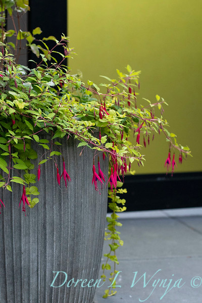 The Chartreuse Garden_1004.jpg