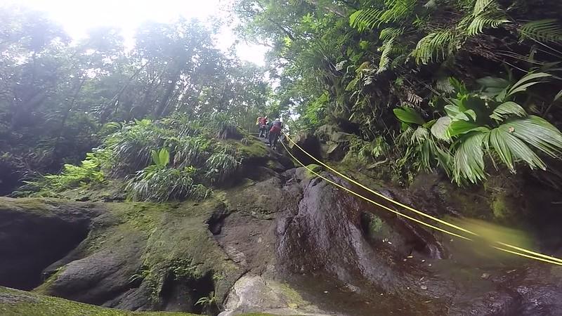 Guadeloupe Video (19).MP4