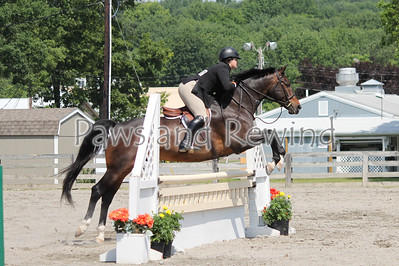 Sussex County Benefit Show June 22, 2013
