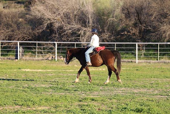 Bumble Bee Ranch ACTHA- 2/14-2/15 2015