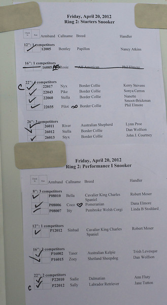Friday Starters and P1 Snooker USDAA trial April 2012