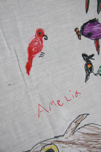 Amelia's red winged blackbird and parrot. :)