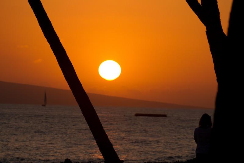 Hawaii2012-1523.jpg