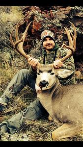 tyler-hunter-gets-first-shot-at-wyoming-mule-deer