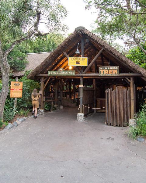 Kilimanjaro Safaris No Line - Disney's Animal Kingdom, Walt Disney World
