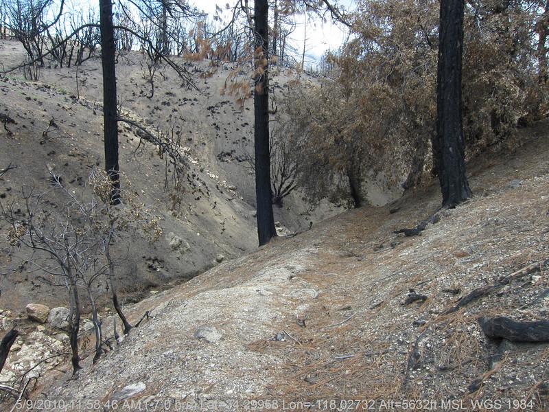 20100509075-Trail Recon, Vetter Mountain Trail.JPG