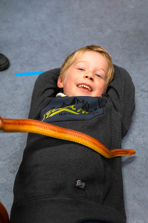 Groep 3: thema slangen